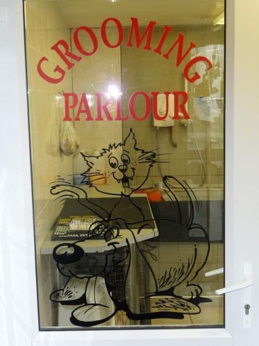grooming1.jpg